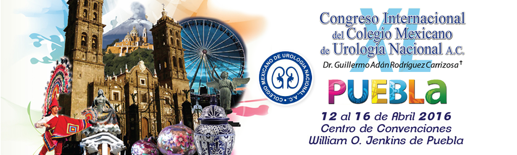 Puebla 2016 Annual Congress